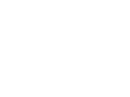 White silhouette of aninfographic representing reports