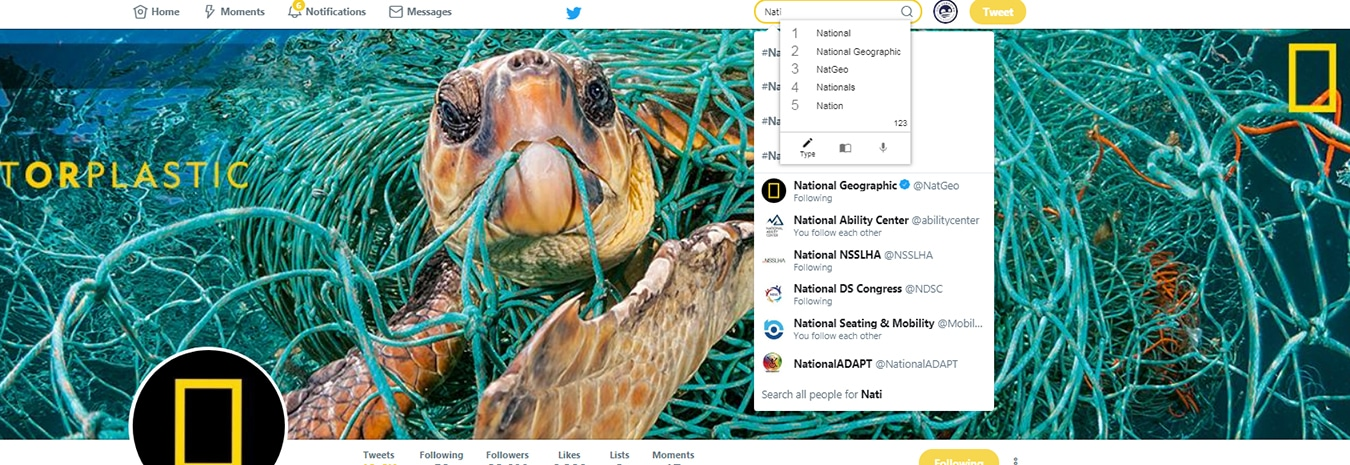 Screen shot of a turtle on national geographic's twitter page with co:writer active